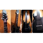 Schecter DAMIEN PLATINUM-7 Strings | Triple3music
