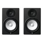 Monitor Speakers